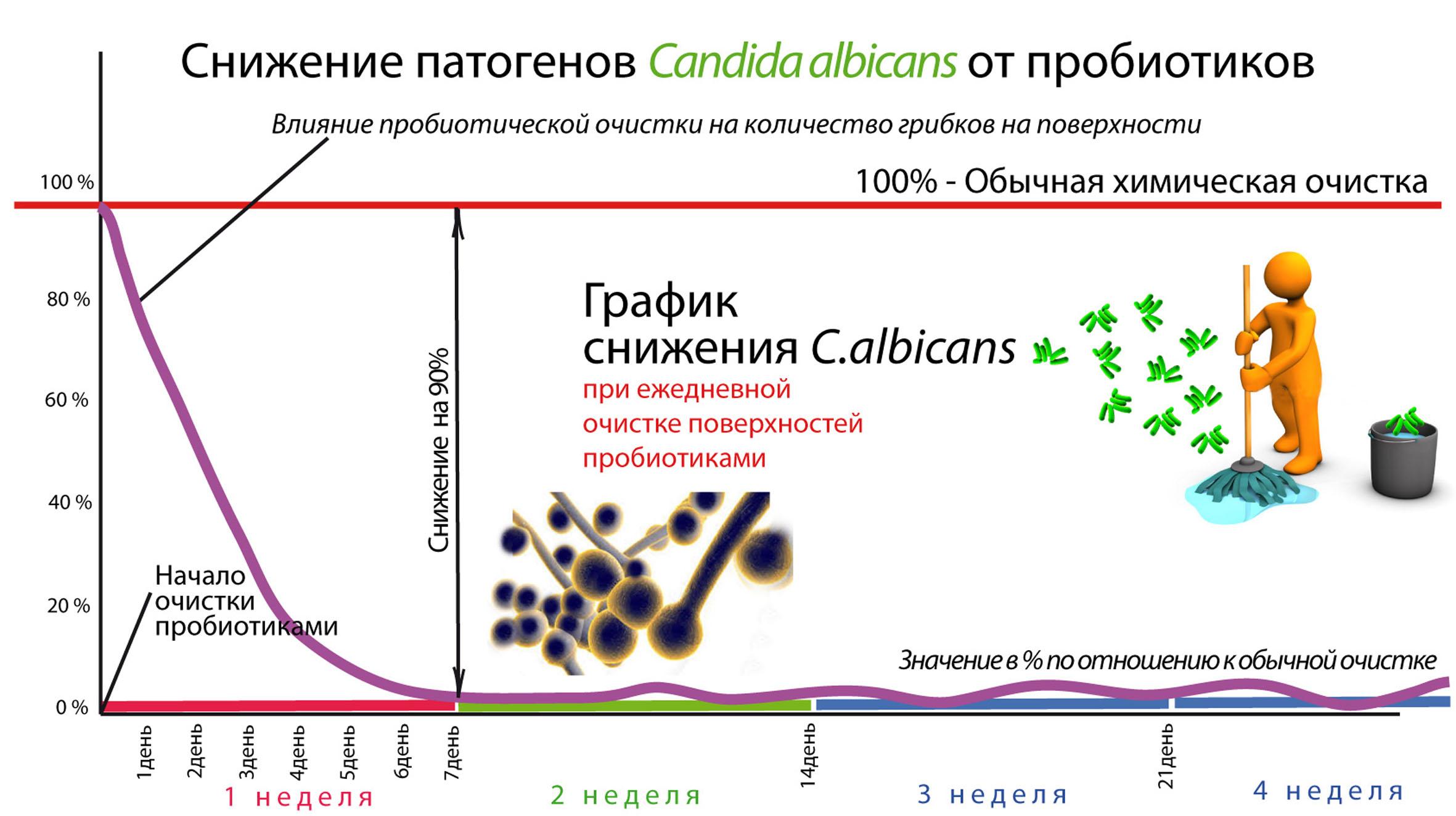 Изображение выглядит как текст, картаАвтоматически созданное описание